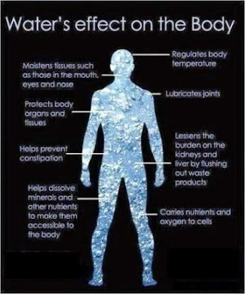 what water does for body