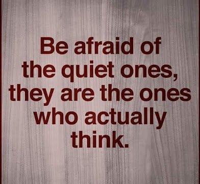 be afraid of the quiet ones