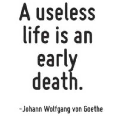 goethe on a useless life