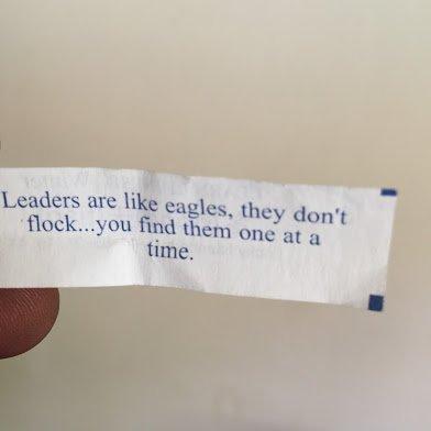 leaders are like eagle