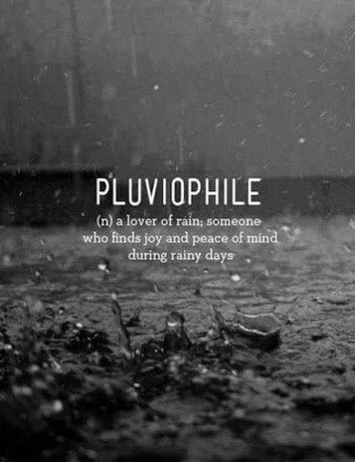 pluovile lover of rain
