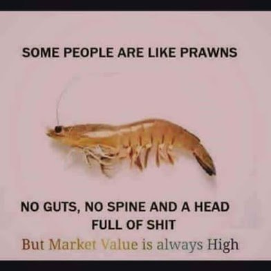 some people are like prawns