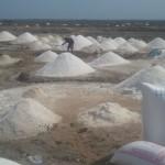 AlayeWebTV Sitting on salt wealth and living in poverty